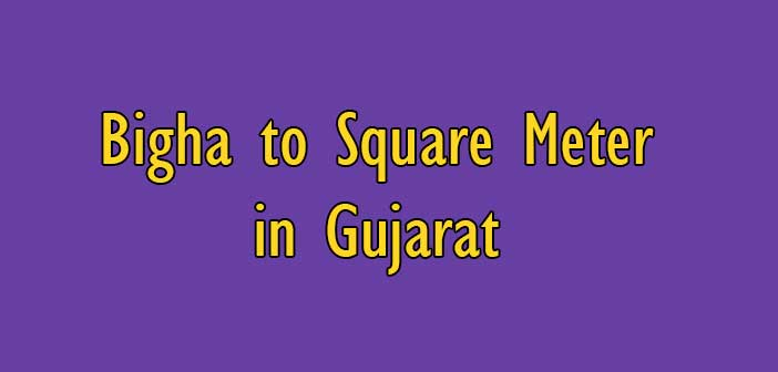 How to measure 1 Bigha to Square Meter in Gujarat - Simple Converter